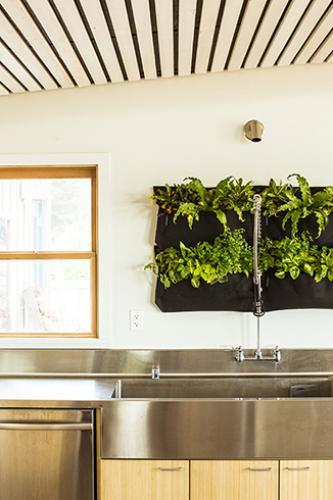 carmel green classroom