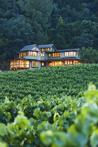 Camalie vineyard