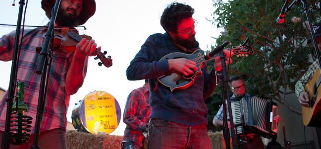red grass bluegrass