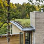 healdsburg green roof